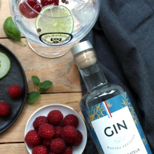 Gintonic dhautefeuille 4828 coupe
