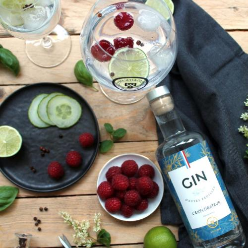 Gintonic dhautefeuille 4829