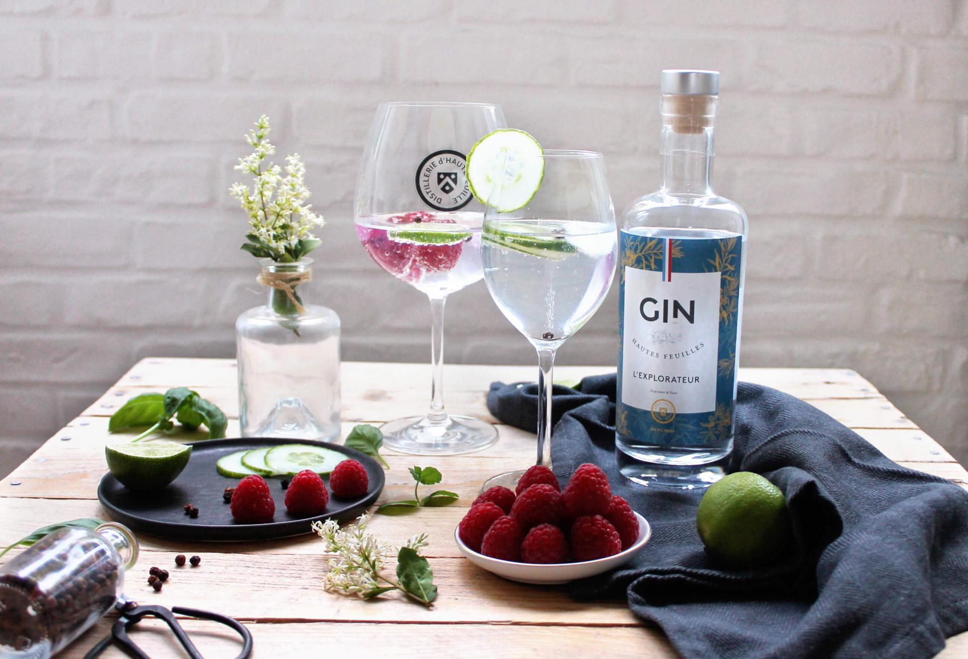 Gintonic dhautefeuille 4853